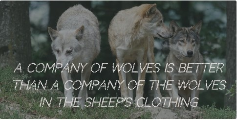 To Be A Wolf In Sheep S Clothing