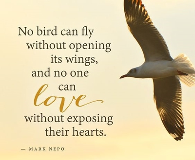 26 Open Your Heart Quotes for Inspiration - EnkiQuotes