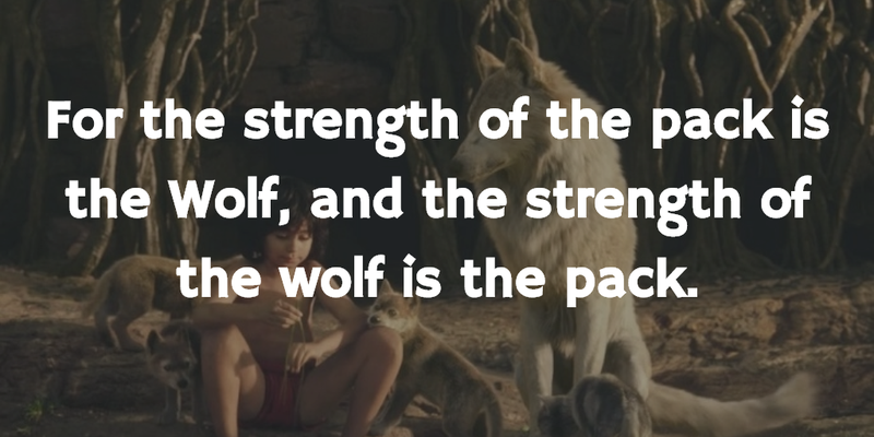Jungle Book Quotes Enchanting Jungle Book Quotes To Make Everyone Think A Lot  Enkiquotes