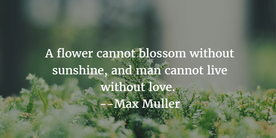 20 Fabulous Quotes About Flower And Life To Inspire You Enkiquotes