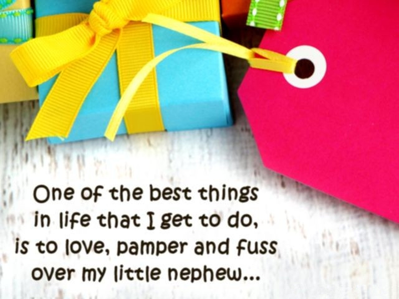 I Love My Nephew Quotes And Sayings Best Funny And Cute Quotes About Nephews  Enkiquotes