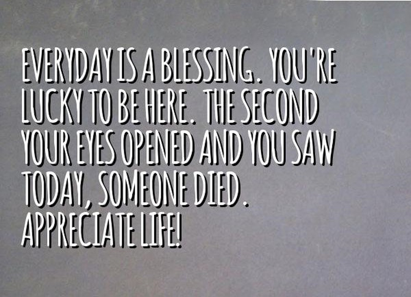 "Celebrating Life Quotes Extraordinary Everyday Is A Blessing Quotes"" To Celebrate Life  Enkiquotes"
