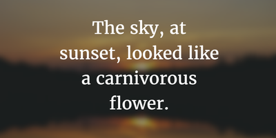 22 Cute Sunset Quotes To Express The Beauty Of It Enkiquotes