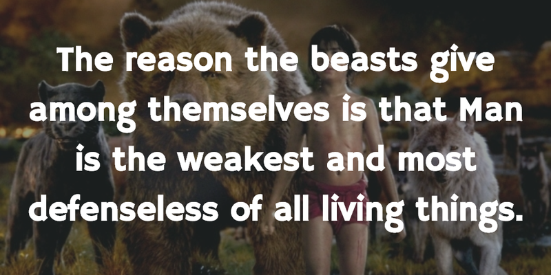 Jungle Book Quotes Amusing Jungle Book Quotes To Make Everyone Think A Lot  Enkiquotes