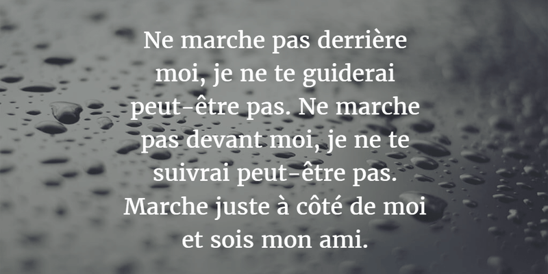 French Quotes About Friendship Magnificent Memorable French Quotes About Friendship  Enkiquotes