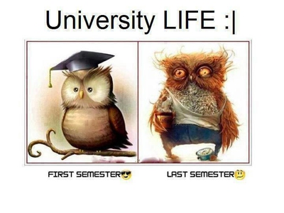 Funny Quotes About University