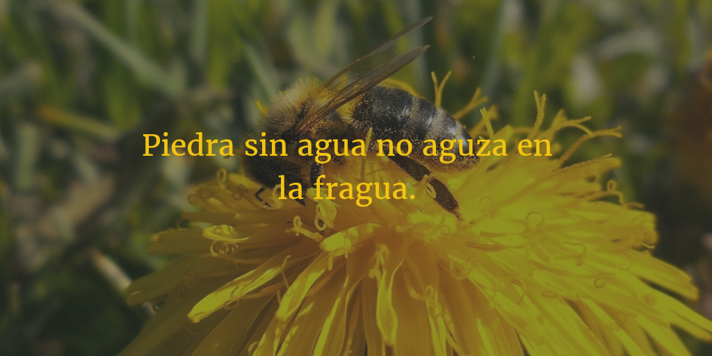 29 Short And Awesome Spanish Quotes English Explained Enkiquotes