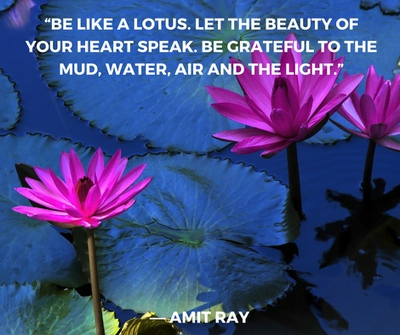 Beautiful lotus flower quotes enkiquotes have gratitude to your surroundings mightylinksfo