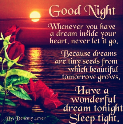 Awesome Have A Good Night Quote