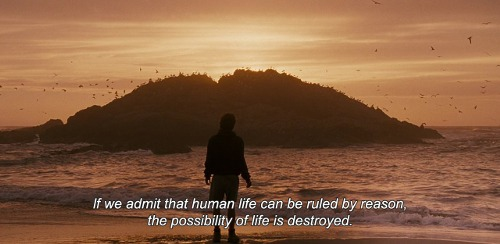 Into The Wild Quotes Brilliant Into The Wild Quotesthe Spiritual Journey Of Christopher