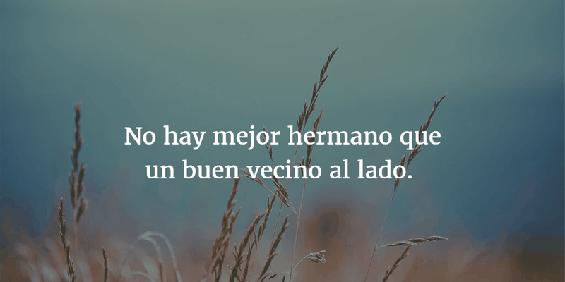 Quotes In Spanish About Friendship Awesome Top 30 Quotes On Friendship In Spanish  Enkiquotes