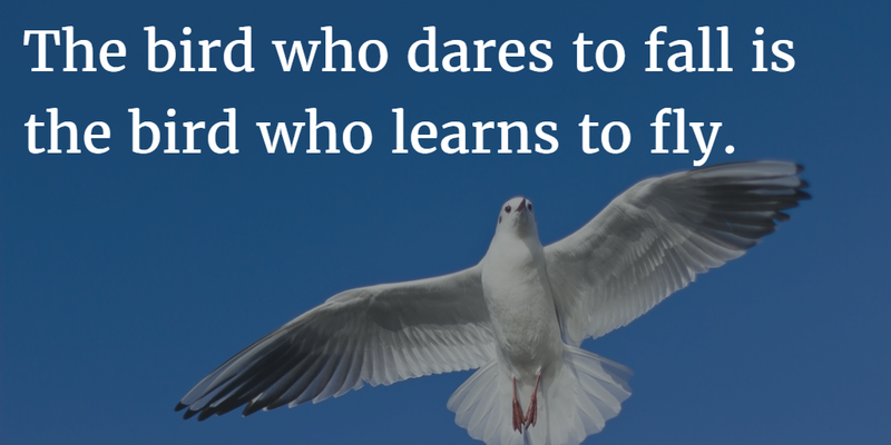 Birds Quotes Entrancing Quotes About Birds Flying To Give You Some Courage  Enkiquotes