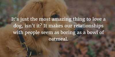 Marley And Me Quotes The Heart Warming Tale Of The Worlds Worst