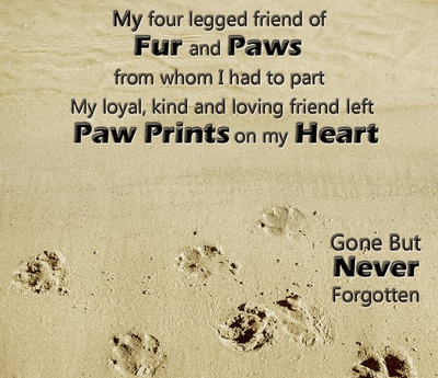 26 Heart Breaking Losing A Pet Quotes Enkiquotes