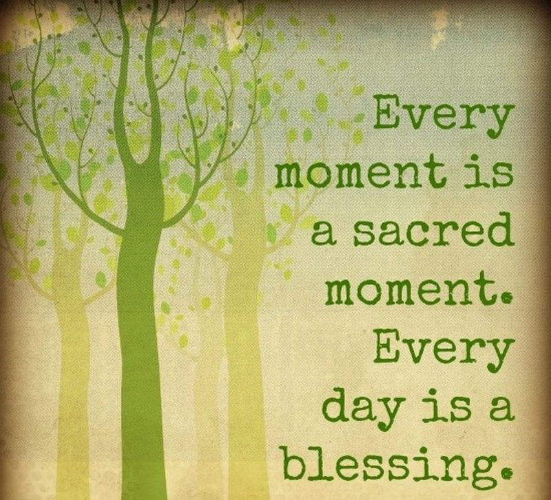 "Everyday Quotes Prepossessing Everyday Is A Blessing Quotes"" To Celebrate Life  Enkiquotes"