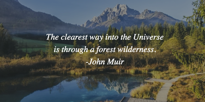 25 Quotes About Nature That Lead You To Appreciate Its Beauty