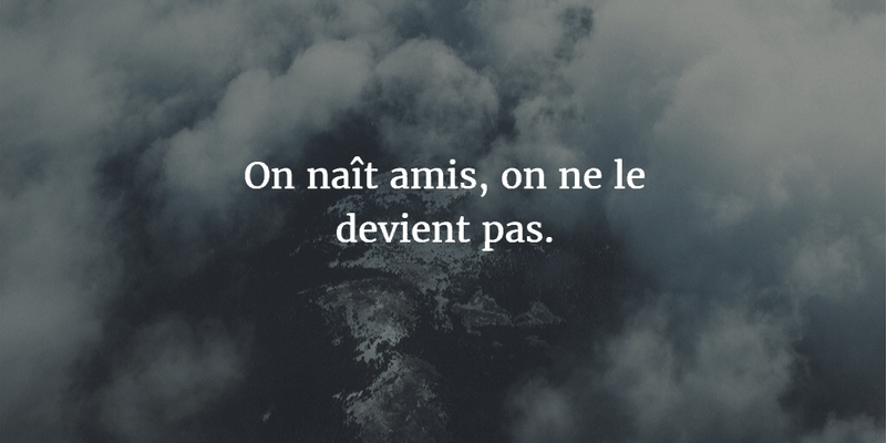 French Quotes About Friendship Mesmerizing Memorable French Quotes About Friendship  Enkiquotes