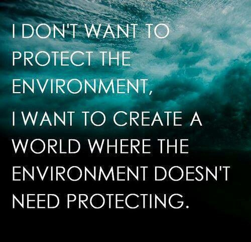 Environment Quotes Classy 48 Environmental Quotes And Sayings To Save Our Earth EnkiQuotes