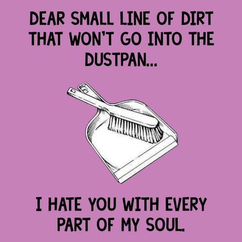 Cleaning Quotes Entrancing Make Cleaning Fun With These Funny Cleaning Quotes  Enkiquotes
